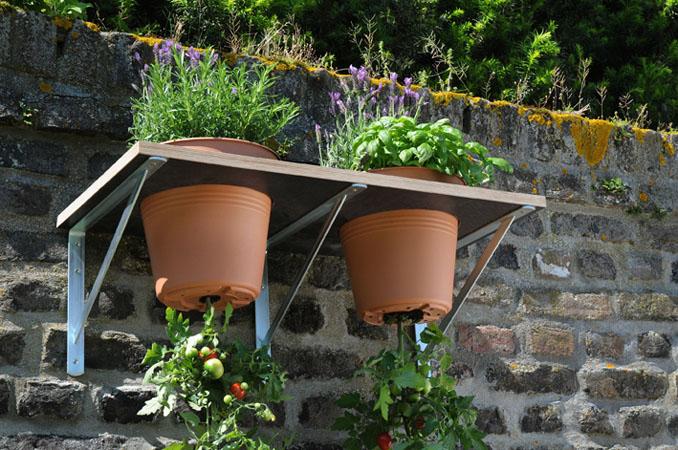 do it yourself tomaten anpflanzen haengekultur. Black Bedroom Furniture Sets. Home Design Ideas