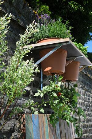 Tomaten platzsparend im Garten oder auf dem Balkon aufhängen