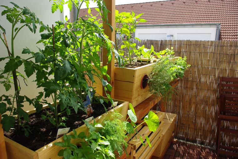 Urban Gardening auf dem Balkon Urban Farming eigene Biofarm auf dem ...