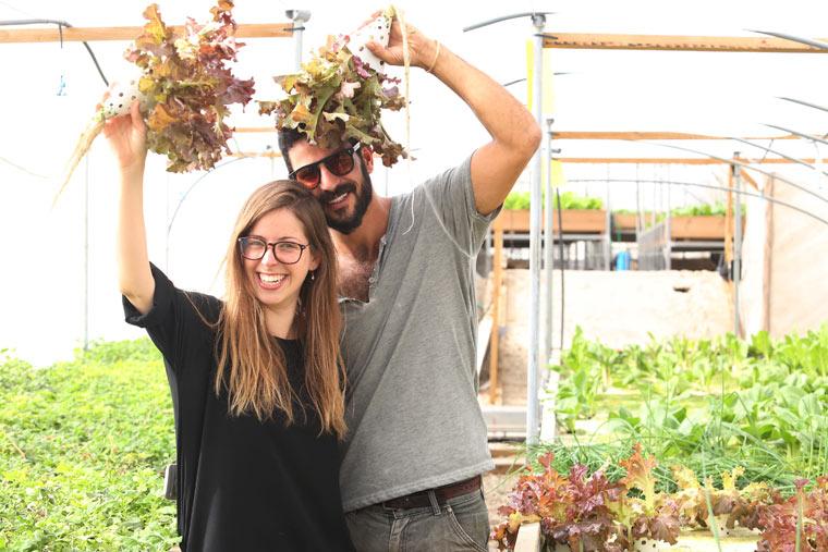 Urbane Gärten auf dem Dach eines Einkfaufszentrums in Tel Aviv
