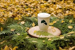 Die Urne ist komplett ökologisch abbaubar©FriedWald/Thomas Gasparini