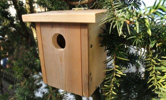 Villa in Traumlage und mit Aussicht oder ein Vogelhaus selber bauen
