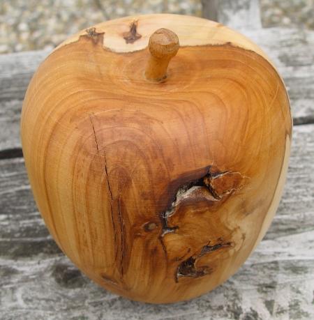 Wild Apfel: Baum des Jahres 2013