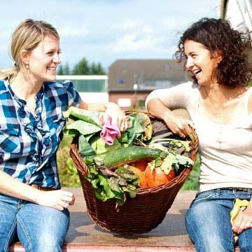 Garten mieten und eigenes Gemüse ernten