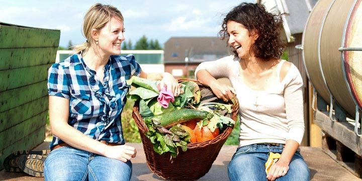 Eigenes Gemüse ernten – mit einem Mietgarten kinderleicht