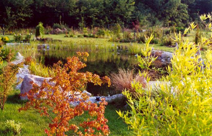 Dieser Teich ermöglicht sogar das Schwimmen daheim © Günter Grumer