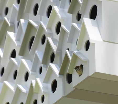 vogelhaus design nendo baut apartmenthaus f r voegel. Black Bedroom Furniture Sets. Home Design Ideas