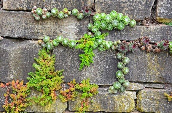 Wie eine Trockenmauer den Garten bereichert