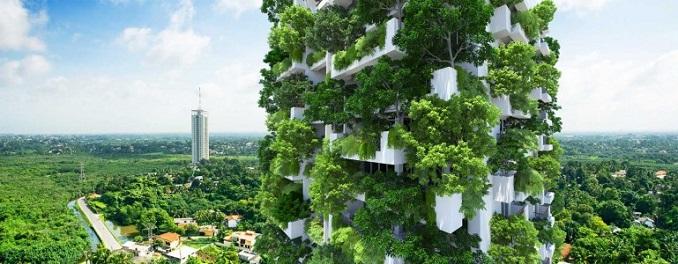 Vertikaler Garten Sri Lanka