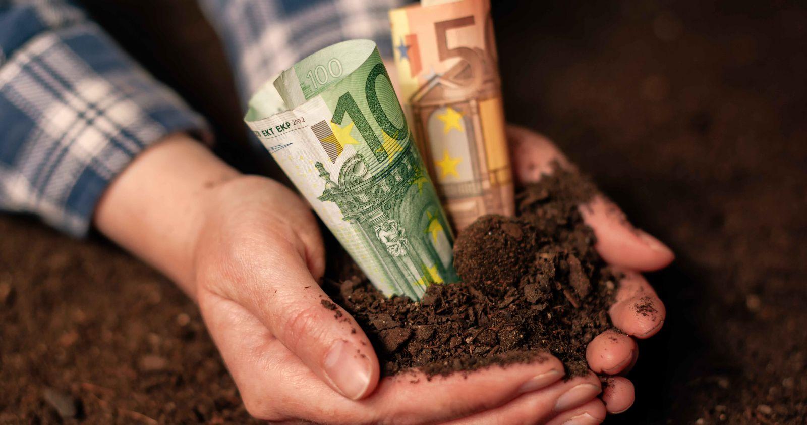 Nachhaltige Geldanlage