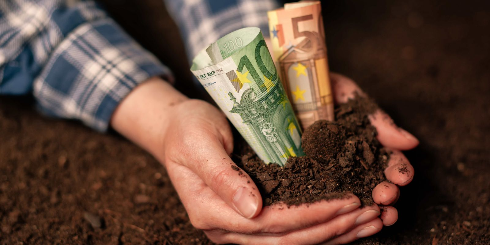 CO₂ sparen: Worauf Sie bei grünen Geldanlagen achten sollten