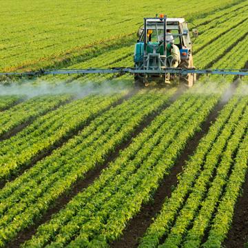 Krank durch gefährliche Pestizide