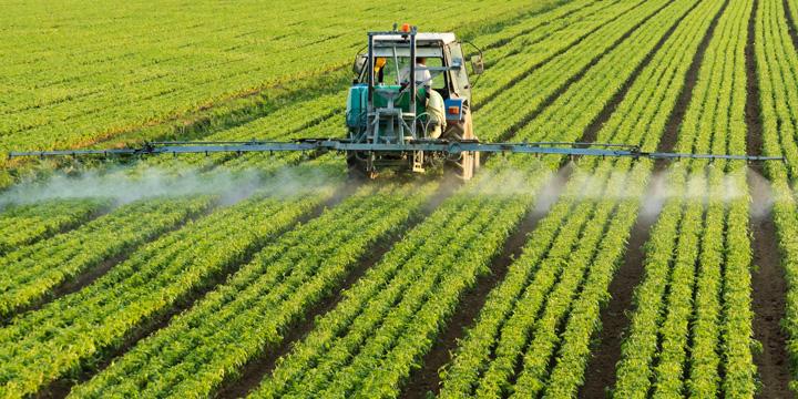 So gefährlich sind Pestizide für unseren Körper