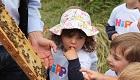 HiPP-Bienenschutz-Aktion in Pfaffenhofen mit 160 Kindern voller Erfolg