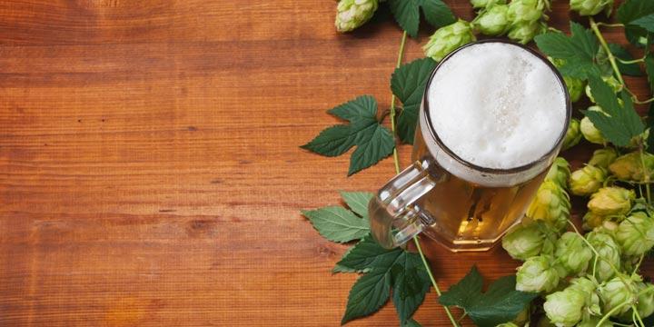 Inhaltsstoffe von Bier können Krebs hemmen