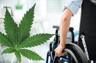 Hilft Cannabis als Medikament bei MS und Parkinson?