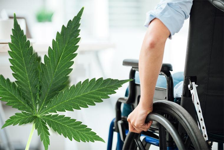 Cannabis als Medikament: Hilft Cannabis bei MS und Parkinson?