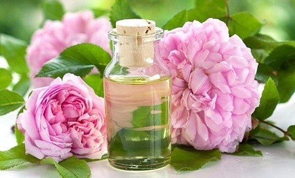 Damaszener-Rose ist Heilpflanze des Jahres 2013