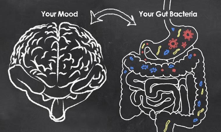 Studie: Darmflora verändert sich bei depressiven Erkrankungen