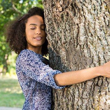 Bäume sind natürliche Helfer gegen Stress