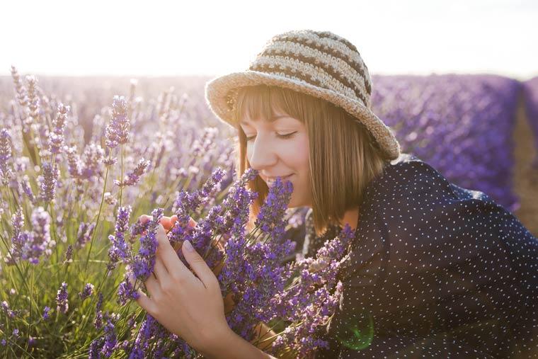 Studie klärt exakt welche Ängste durch Lavendelöl gelindert werden