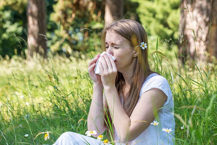 Allergien wie z. B. Heuschnupfen nehmen zu