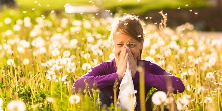 Hausmittel und Homöopathie gegen Heuschnupfen