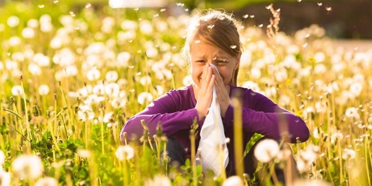 Fließschnupfen, tränende oder gereizte Augen, ständiges Niesen, verstopfte Nasen.Frühling bedeutet Pollen Hochsaison.
