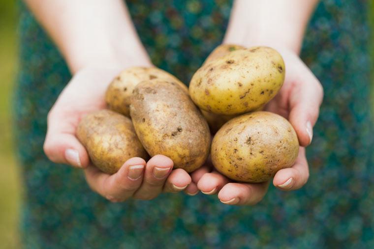 8 Lifehacks mit Kartoffeln - ein altbewährtes Hausmittel