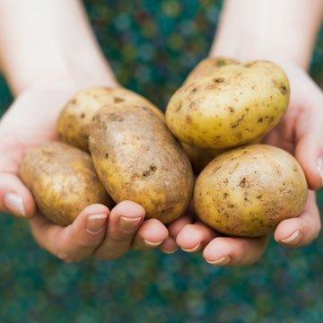 8 Lifehacks mit Kartoffeln für den Haushalt