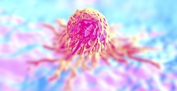 Krebs Tumor Ecowoman