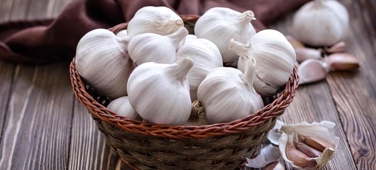 Allicin, eine schwefelhaltige Verbindung, die im Knoblauch für den Geruch sorgt, hat eine antikarzinogene Wirkung