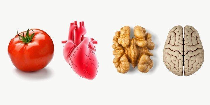Diese Nahrungsmittel sehen aus wie Organe und helfen ihnen auch