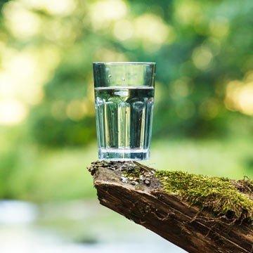 Rohes Wasser: Ein verrückter Gesundheitstrend?