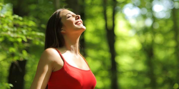 Waldbaden: Wie wir uns glücklich spazieren