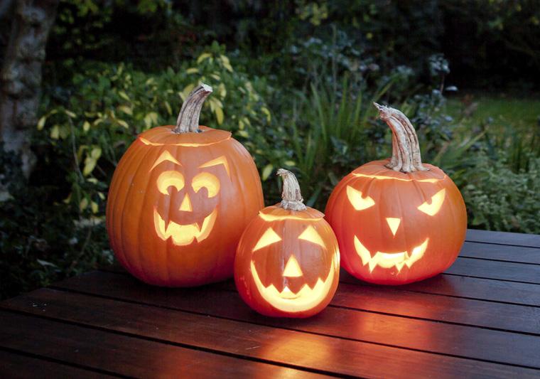 Halloween steht vor der Tür Kürbis schnitzen gehört hier dazu