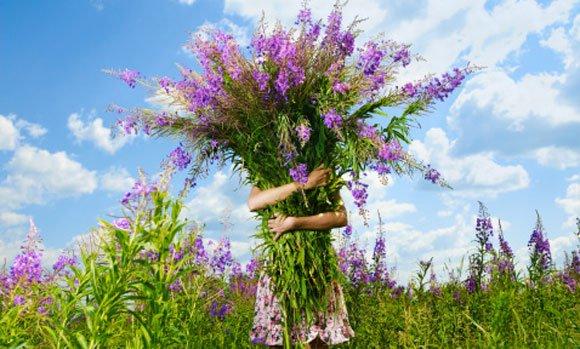 Vital und mit Power in den Sommer: Gesunde Kräuter