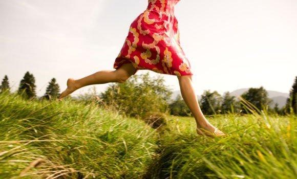 Kräuterkunde: Zarte Pflanzen mit Superkräften heilen natürlich