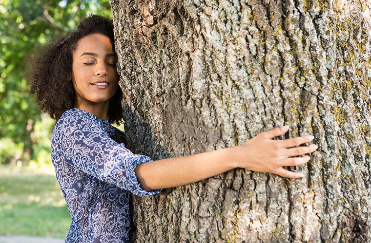 Bäume verleihen und Kraft und Ruhe.