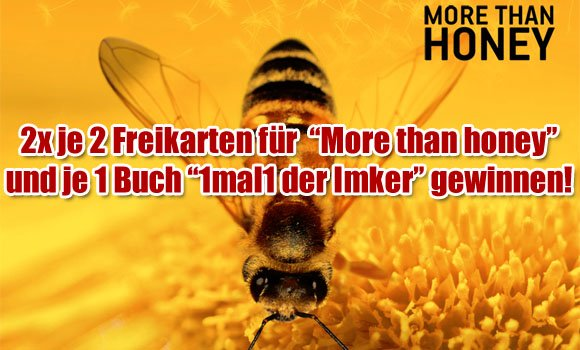 More than Honey - Filmpaket gewinnen
