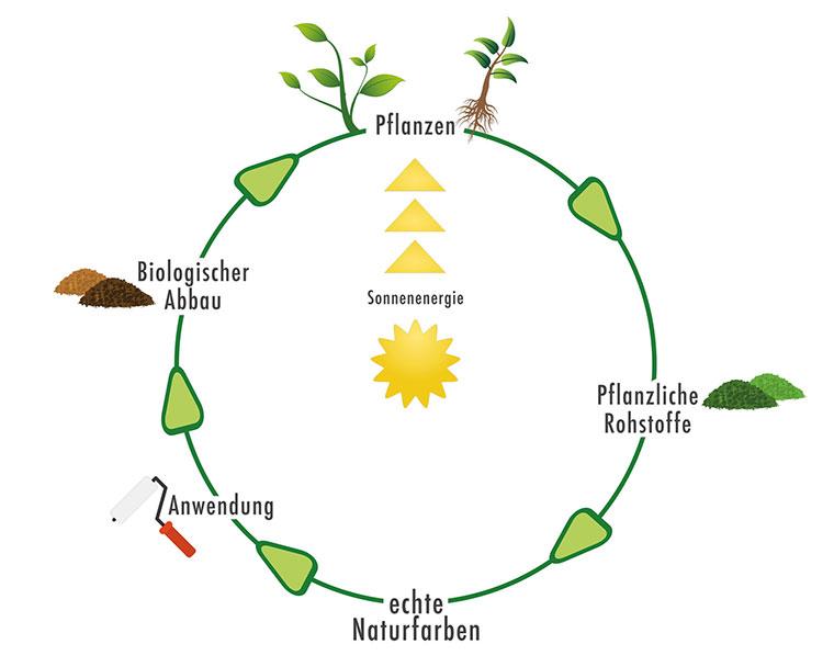 Die Naturfarben bestehen aus pflanzlichen Rohstoffen.