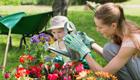 Allergie keine Chance geben:Ein Garten für Allergiker
