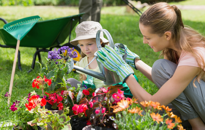 Allergiefreier Garten