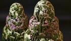 Naturzauber fürs Haus,filigrane Blüten-Skulpturen