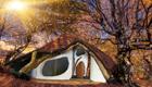 Hobbit Baumhaus im Grünen, kreativer Wohnraum