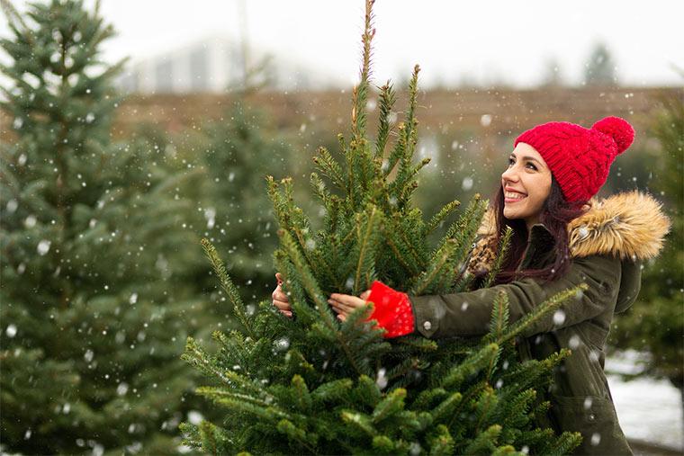 Frau kauft einen fairen Weihnachtsbaum