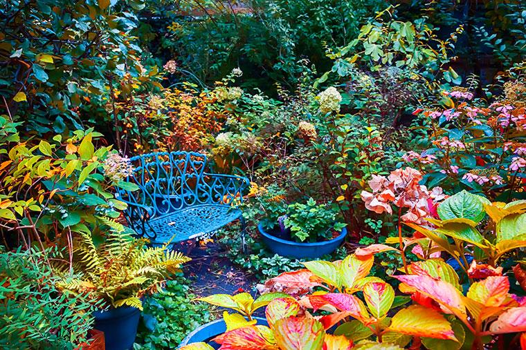 Welche Gartenarbeiten müssen im Herbst gemacht werden?