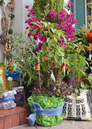 Pflanzen f r garten mit wenig sonne kreative ideen f r for Innendekoration pflanzen