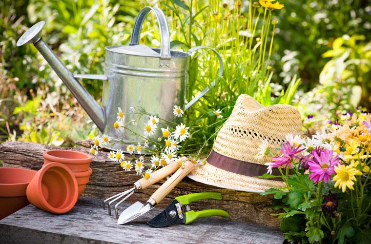 Tipps zur Gartenpflege