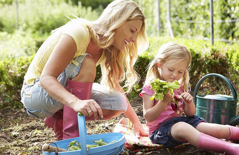 Mondkalender als Orientierung für die Gartenarbeit